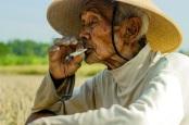 Sajak Selinting Rokok Untuk Mbah - Norman Adi Satria