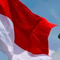 Puisi Kebangsaan: Kaburnya Bendera Pusaka (Bosan dengan basa-basi ceremonial) - Norman Adi Satria