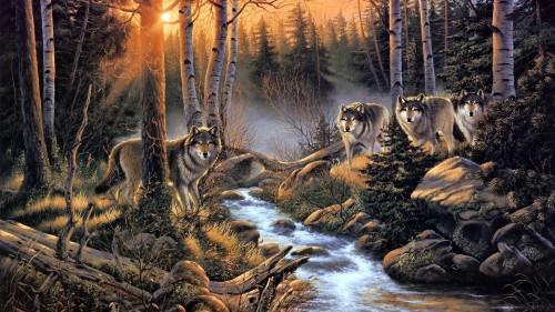 sidang serigala